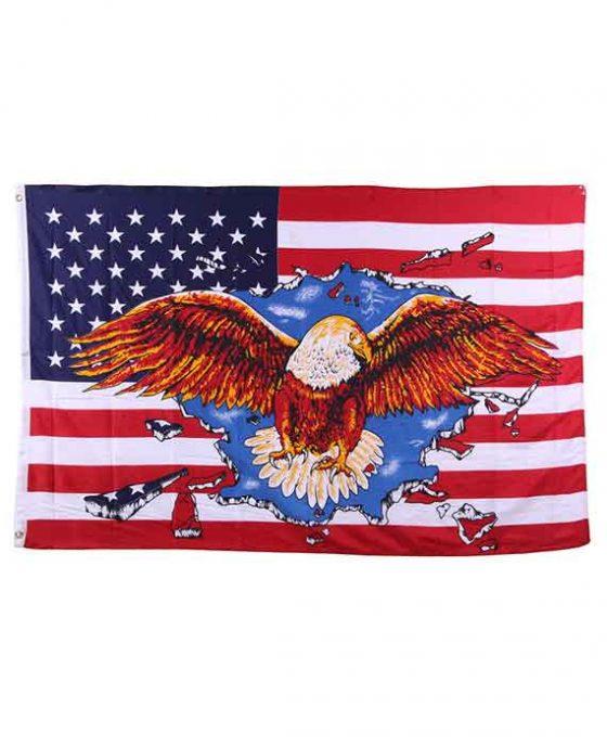 Bandiera Stati Uniti D'America Con Aquila Centrale